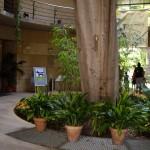 植物園入り口。