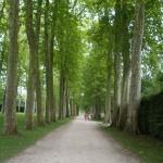 庭園の脇道を行くと、ベルサイユ宮殿の混雑からは想像出来ない静けさ。