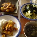 イカ、大根、ジャガイモの煮物、野菜スープ、白身魚のトマトソース和え、韓国風サラダ。