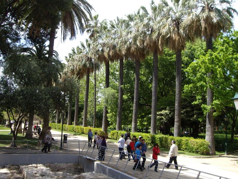 公園でお散歩を楽しむ人がたくさん。