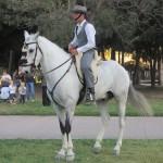 馬に乗っていると3割増かっこ良く見えます。