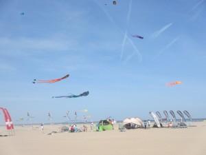 お昼ごはん時間で凧も全然上がってなかったので、早々切り上げました。