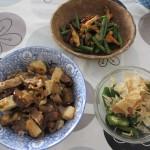 豆腐と豚肉をナスの煮浸しと炒めた丼、オクラ、ベーコン・椎茸・いんげんの炒めもの。
