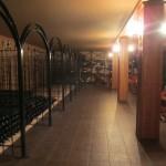 100年の歴史がある貯蔵室。昔のワインを保管していて、時とともにどう変わっていくのかチェックするんだそうです。
