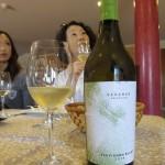 メルセゲラ(Merseguera)と言う品種の白ワイン。元々メルセゲラは、補助品種のブドウだそうです。